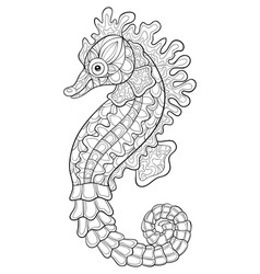 adult coloring bookpage a cute seahorse image for vector