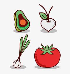 avocado onion garlic and tomato food vector image