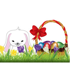 Crocus and easter rabbit vector