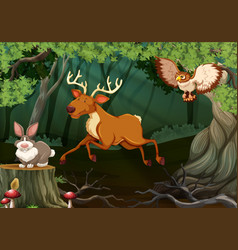 Forest scene with wild animals vector