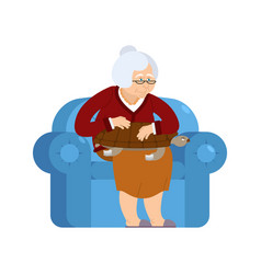 Grandmother and turtle pet sitting on chair vector