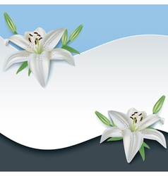 Greeting or invitation card with 3d flower lily vector