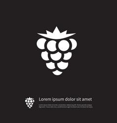 Isolated blackberry icon bramble element vector