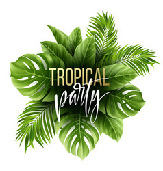 summer tropical leaf background with exotic palm vector image vector image