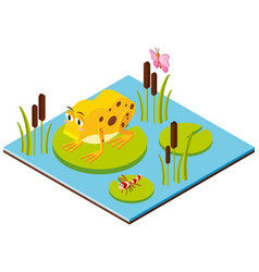 3d design for frog and dragonfly on leaves vector image