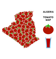 algeria map composition of tomato vector image