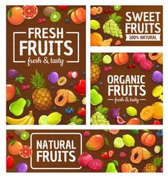 Fruits berries tropical farm market garden food vector