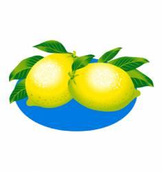 lemons illustration vector image