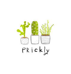 prickly spiky cactus set vector image