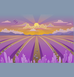 Provence landscape with lavender field vector