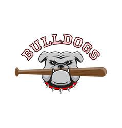 logo bulldog with a baseball bat in the teeth vector image