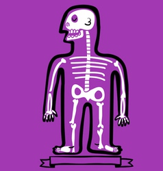 human body bones vector image vector image