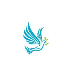 Bird wing dove logo template vector
