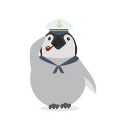 cute sailor penguin vector image