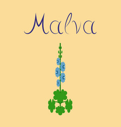Flat stylish background plant malva vector