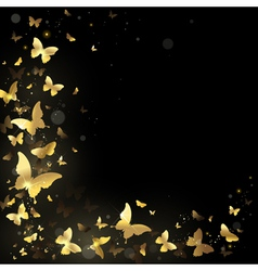 frame golden butterflies vector image