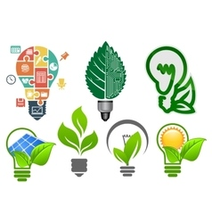 Light bulbs ecology icons and symbols vector
