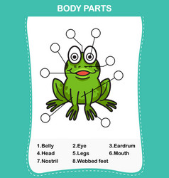frog vocabulary part of body vector image