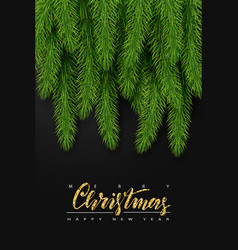 background with realistic christmas tree branches vector image