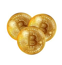 bitcoin gold coins vector image