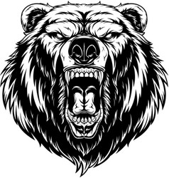 Head of a ferocious bear vector