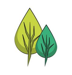 Leaf nature botanic plant cartoon vector