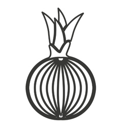 onion vegetable isolated icon vector image