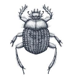 sacred beetle of scarabs tattoo art symbol vector image