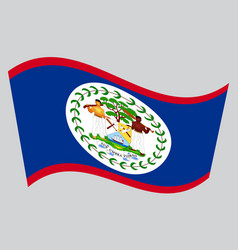 flag of belize waving on gray background vector image vector image