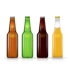 Beer bottle set Dark and lager vector image vector image