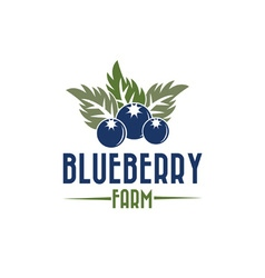 Blueberry farm vector
