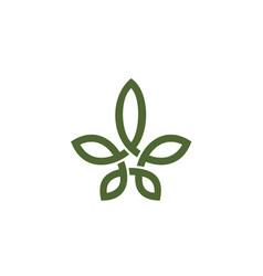 cbd cannabis marijuana hemp pot leaf knot logo vector image