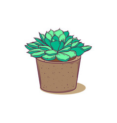 Cute succulent in pot for postcards tags web vector