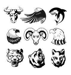 Heads of animals for logo or sport symbols vector