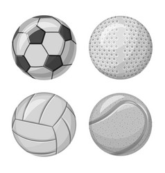 sport and ball sign vector image