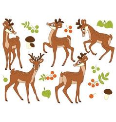 Woodland Deers vector image vector image