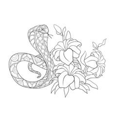 Adult coloring bookpage a cute snake image for vector