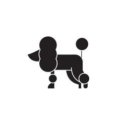 poodle black concept icon poodle flat vector image