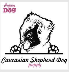 Puppy caucasian shepherd dog - peeking dogs vector