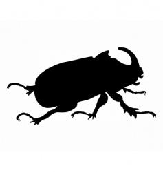 rhinoceros beetle vector image