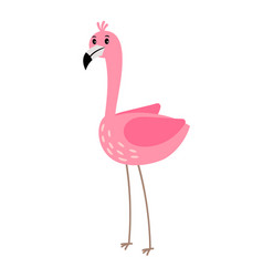 pink flamingo bird vector image