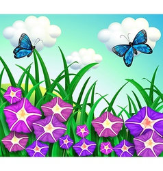 A garden at the hill with purple flowers vector