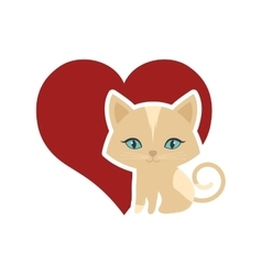cat animal domestic furry red heart vector image