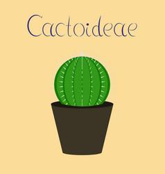 Flat stylish background plant vector