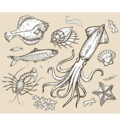 Hand drawn sketch set seafoodunderwater world vector image