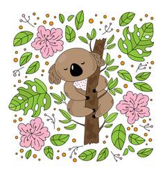 koala garden australian bear flower vector image