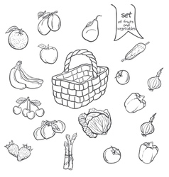 Set of fruits and vegetables with a basket vector