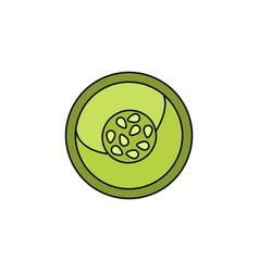 vegetable slice icon vector image