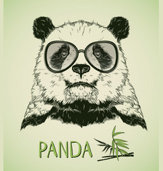 hand drawn portrait of panda bear with glasses vector image vector image