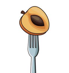 Apricot fork fresh image vector